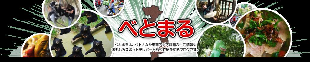 Trang web Vietmaru (http://www.vietmaru.com/)