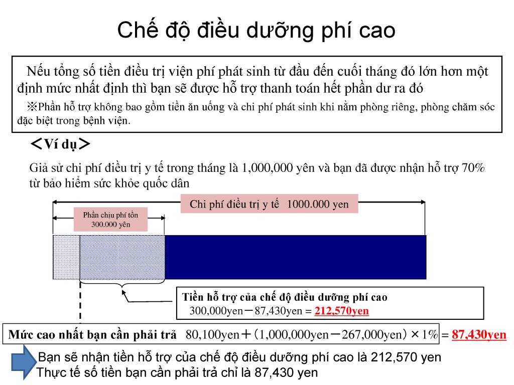 file-11